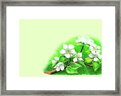 Spring Flowers On A Branch Framed Print