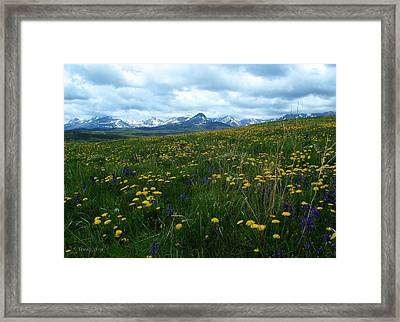Spring Flowers On The Front Framed Print