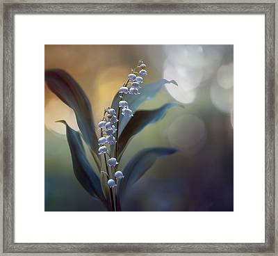 White Pearls Framed Print by Magda  Bognar
