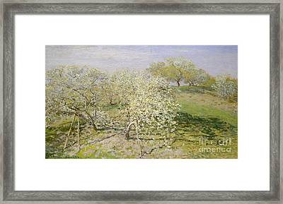 Spring, Fruit Trees In Bloom, 1873 Framed Print by Claude Monet