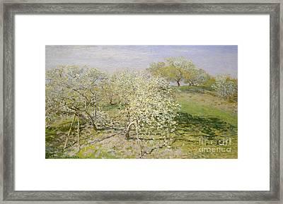 Spring, Fruit Trees In Bloom, 1873 Framed Print