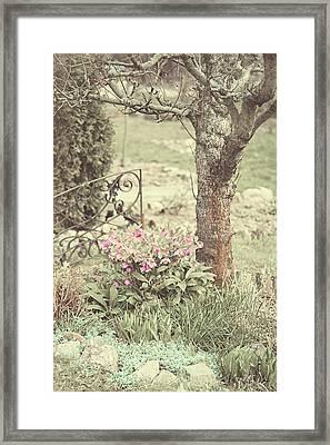 Spring Garden Pastel Framed Print by Jenny Rainbow