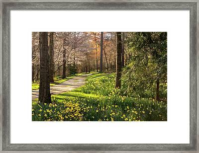 Spring Garden Path Framed Print