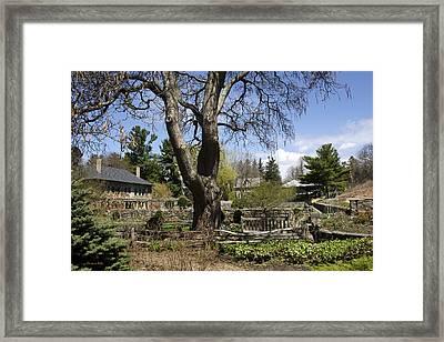 Spring Garden Tree Landscape Framed Print by Christina Rollo