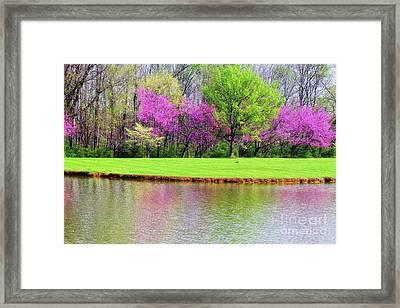 Spring Framed Print by Geraldine DeBoer