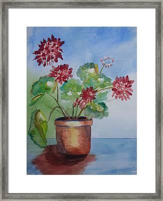 Spring Geranium 1  Framed Print