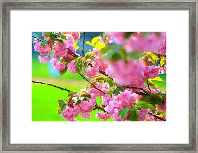 Spring Glory Framed Print