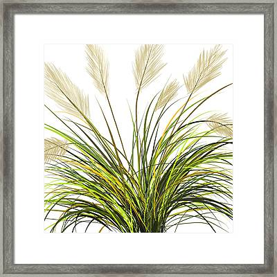 Spring Grass Framed Print by Lourry Legarde