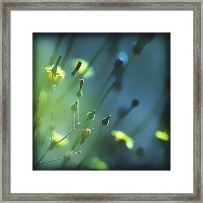 Framed Print featuring the photograph Spring Grass by Yulia Kazansky