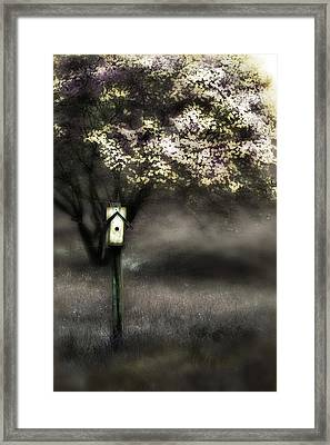 Spring  Framed Print by Gray  Artus