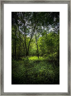 Spring Green Framed Print by Marvin Spates