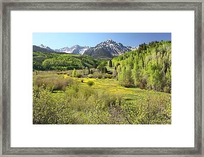 Spring Greens Framed Print by Eric Glaser