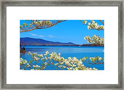 Spring Has Sprung 2 Smith Mountain Lake Framed Print