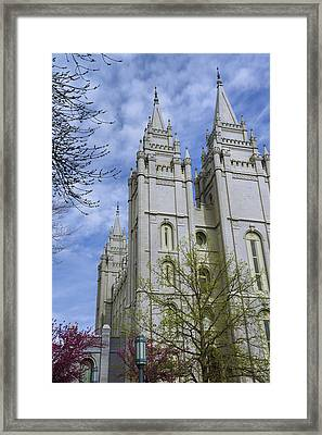 Spring Has Sprung Framed Print by Chad Dutson
