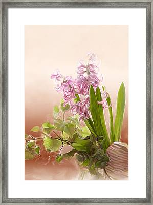 Spring Hyacinth Framed Print