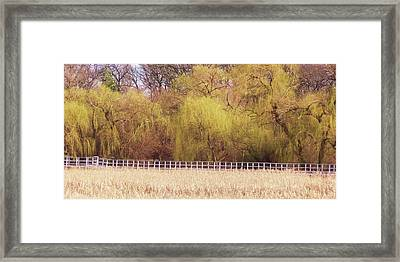 Spring I Framed Print by Anna Villarreal Garbis