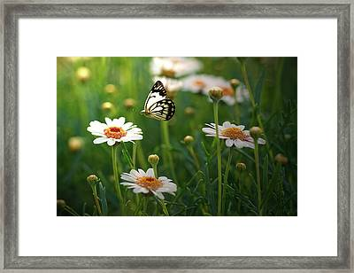 Spring In Air. Framed Print