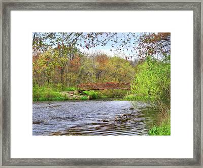 Spring In Bloom Framed Print by Mikki Cucuzzo