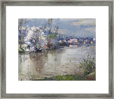 Spring In Hyde Park Framed Print