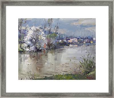 Spring In Hyde Park Framed Print