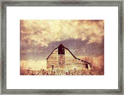 Spring In Kansas  Framed Print by Julie Hamilton