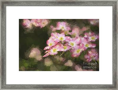 Spring In Pink Framed Print