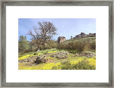 Framed Print featuring the photograph Spring In Pinnacles National Park by Art Block Collections