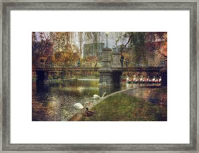 Spring In The Boston Public Garden Framed Print