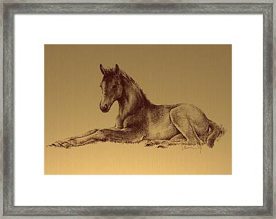 Spring In The Fields Framed Print by Laurie Musser