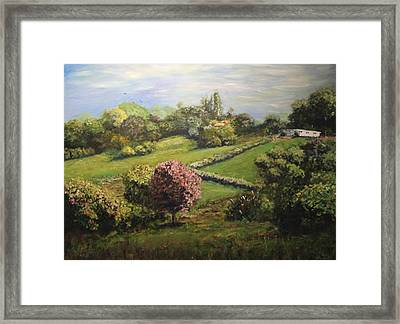 Spring In The Hills Framed Print by Dave Manning
