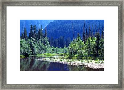 Spring In The Mountains 3  Framed Print by Lyle Crump