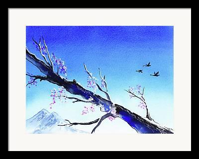 Beautiful Trees In Bloom Framed Prints
