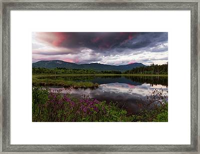 Framed Print featuring the photograph Spring In The North Woods by Patrick Downey