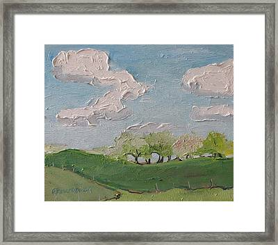 Spring In The Orchard Hatley Quebec Canada Framed Print