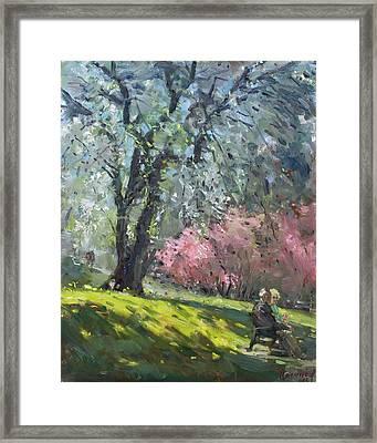 Spring In The Park Framed Print