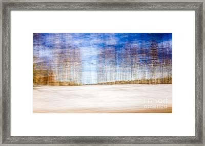 Spring In The Slumberland Forest Framed Print