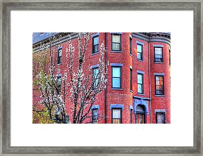 Spring In The South End Boston Ma Framed Print by Toby McGuire