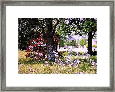 Spring In The Yard Framed Print