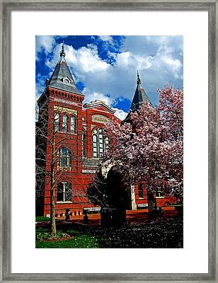 Spring In Washington Dc Framed Print