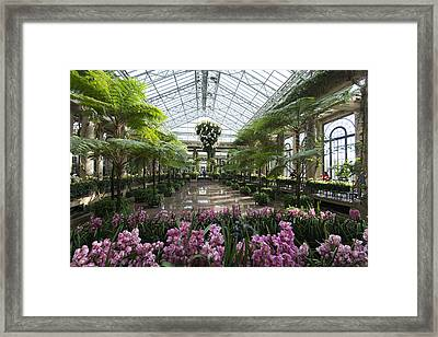 Spring Indoors Framed Print by Phil Abrams