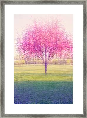 Spring Is A Blur Framed Print