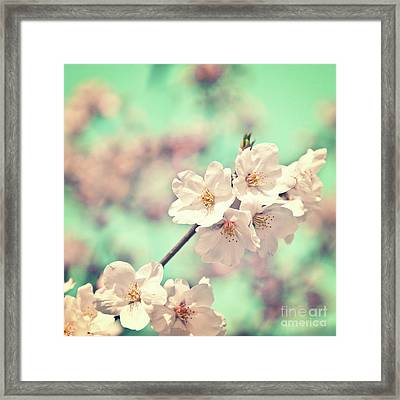 Spring Is Coming Framed Print by Delphimages Photo Creations