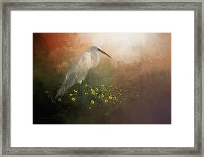 Spring Is Here Framed Print