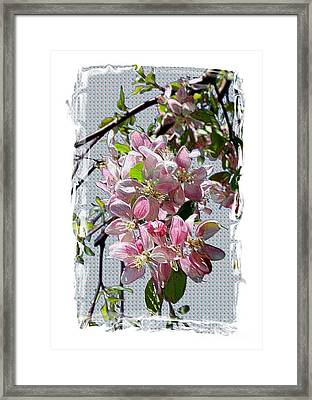 Spring Is Melting Away Framed Print by Carol Groenen
