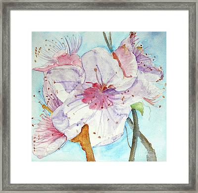 Framed Print featuring the painting Spring by Jasna Dragun
