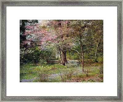 Framed Print featuring the photograph Spring by John Rivera