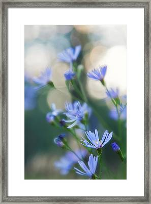 Spring Framed Print by Kate Livingston