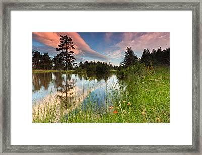 Spring Lake Framed Print by Evgeni Dinev