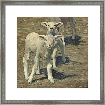 Spring Lambs Brothers Framed Print by John Reynolds