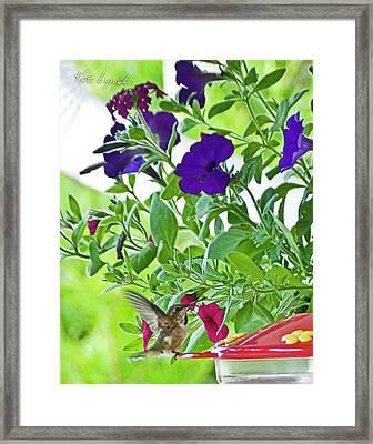 Spring Landing Framed Print